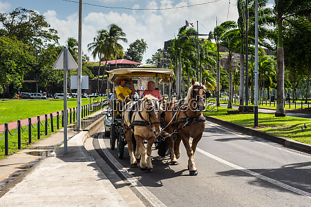 tourists in horse drawn carriage