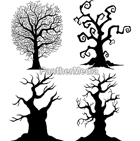 scary tree silhouettes on the white