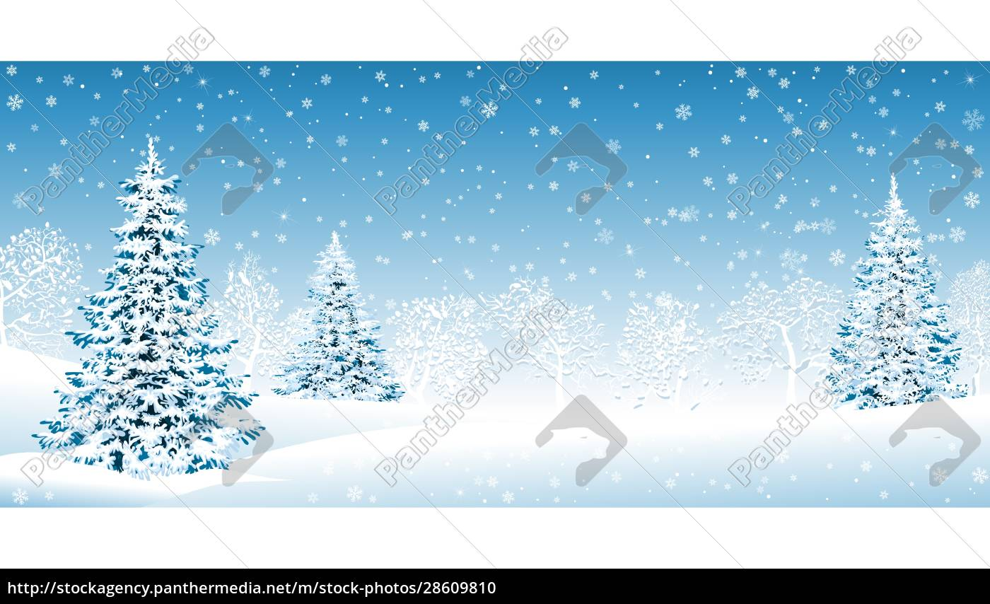 snowy, forest, christmas, winter, background - 28609810