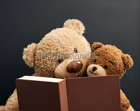 two brown teddy bears are sitting