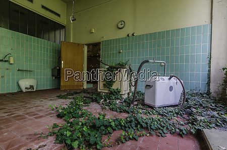 room with plants in rehabilitation center