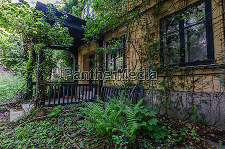 villa with plants in the forest