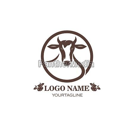cow logo vector illustration template