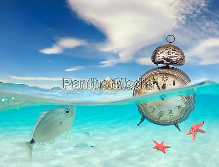 turquoise ocean with underwater view and