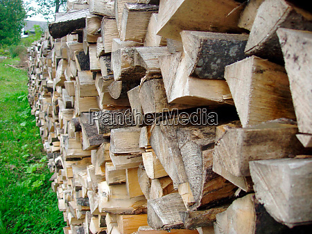 firewood a renewable energy resource