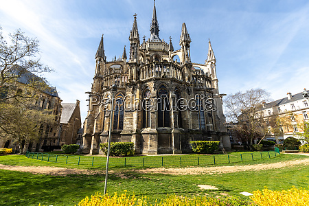 wide angle view at cathedral notre