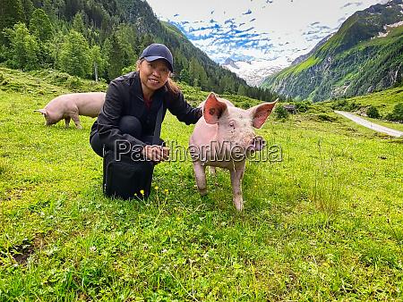 trustine pig at pasture