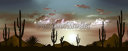 beautiful mexican desert landscape in the