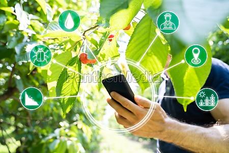 smart farming digital technology agriculture app