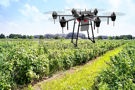 agriculture industry farming technology at plant