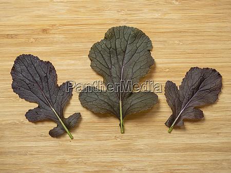 leaves of mizuna f1 red empire