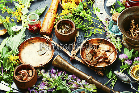 healing herb and flower