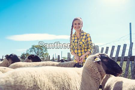 farmer feeding her sheep on the