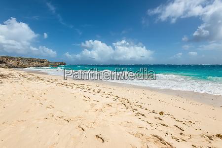 bottom beach in barbados island caribbean