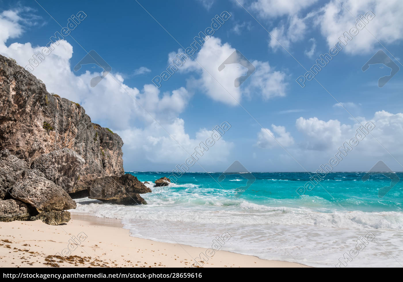 bottom, bay, in, barbados, , west, indies, - 28659616