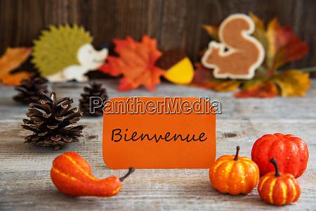 label with autumn decoration bienvenue means