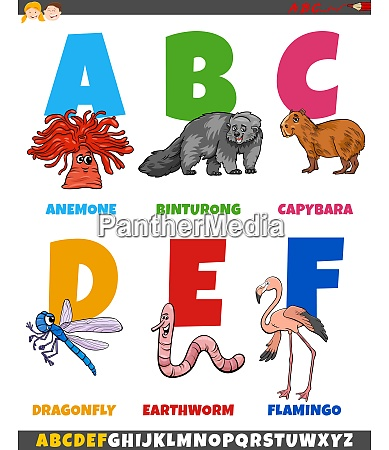 educational cartoon alphabet collection with animals