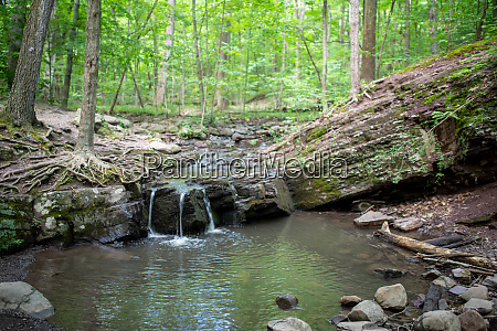 idyllic green forest waterfall full frame