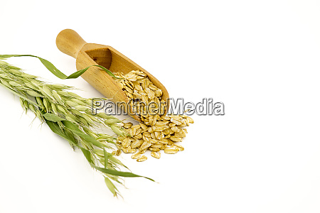 oat flakes in wooden scoop and