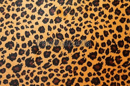 jaguar hide