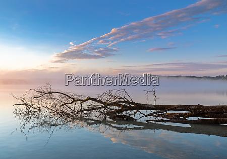 dawn at lake woerthsee bavaria germany