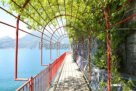 the scenic path walk of lovers