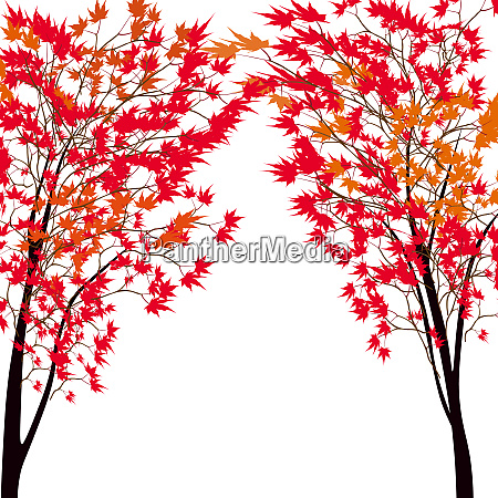 card with autumn maple tree red