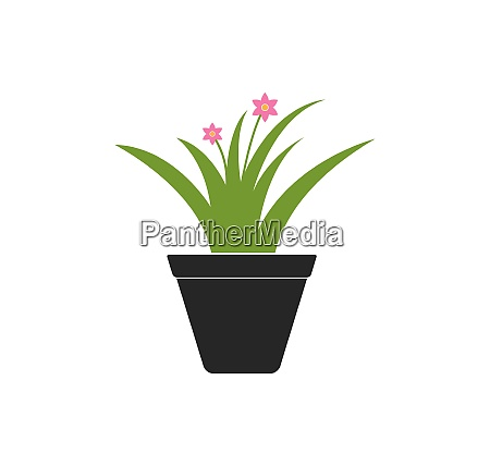plant in pot illustration vector template