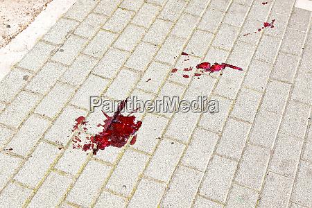 bloody trail