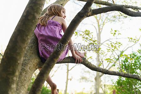 girl 6 7 sitting in tree
