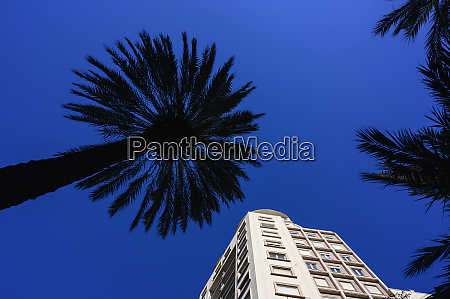 spain valencia low angle view of