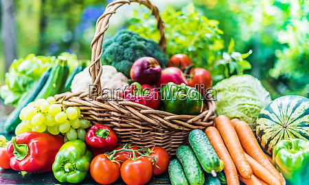 variety of fresh organic vegetables and