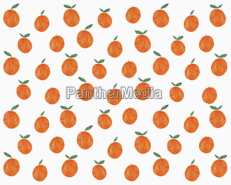 illustration of oranges on white background