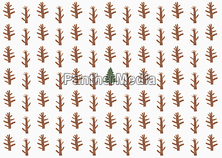 childs drawing of coniferous tree surrounded