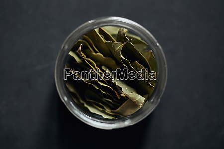 view from above bay leaves in