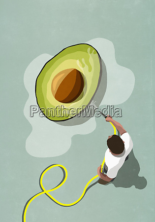 man with hose watering large avocado
