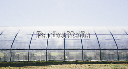 a polytunnel for growing crops with