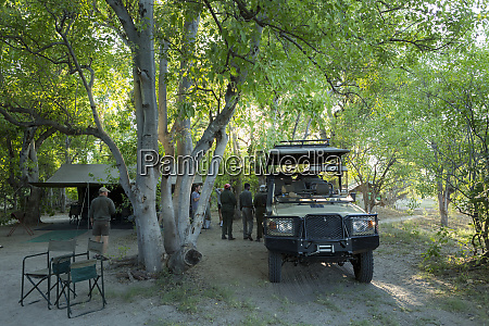 safari vehicles and guides under the