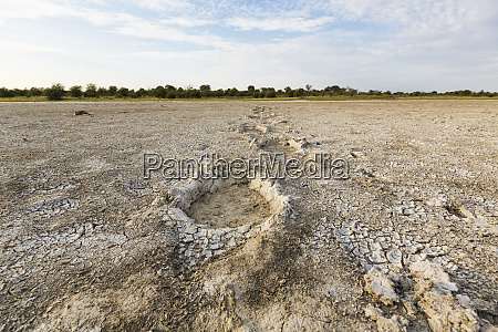 elephant footprints nxai pan botswana