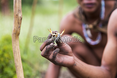 close up of bushman holding scorpion