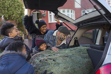 family loading christmas tree into car