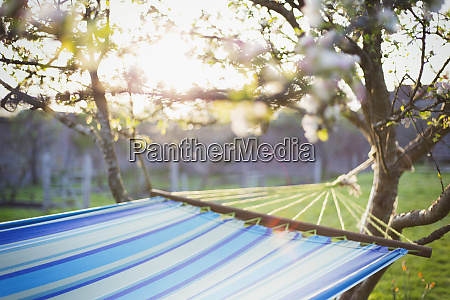hammock in sunny idyllic garden