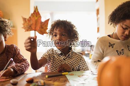 curious boy holding autumn leaf at