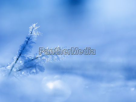 small ice crystals