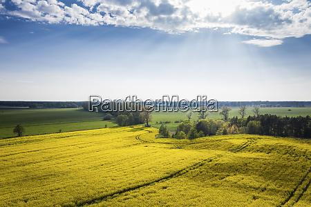 germany brandenburg drone view of sky
