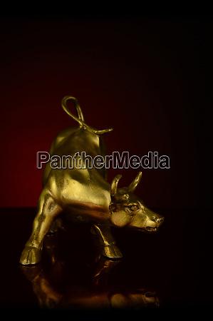 powerful horned bull