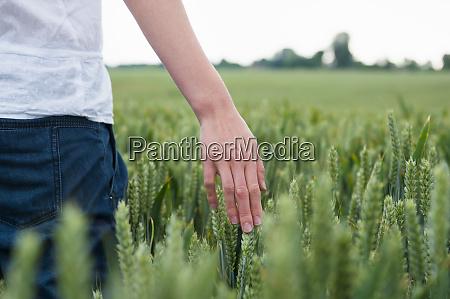 woman touching crops on field