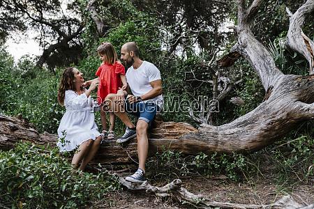 family relaxing on fallen tree in