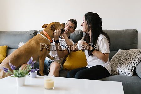 couple pampering with dog while sitting