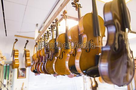 violin making violins handing in a